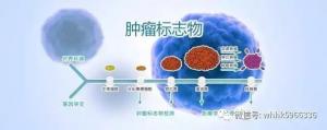 防癌科普在威海系列之——治疗肿瘤,早发现是关键