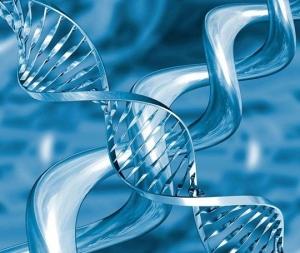 多大以后,需要开始做癌症早期筛查?