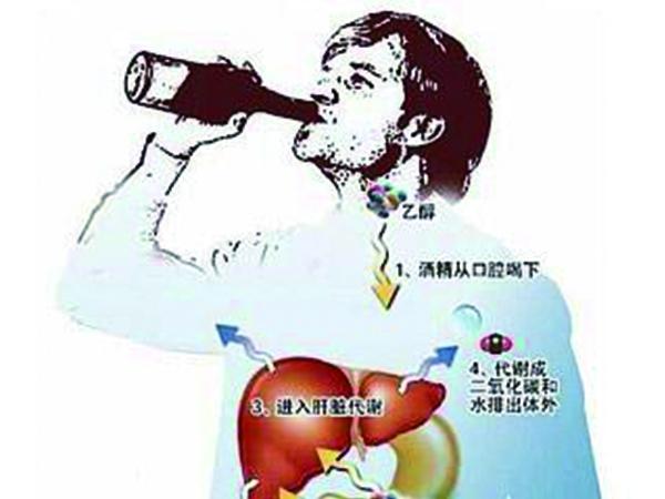 东营酒精代谢能力基因检测