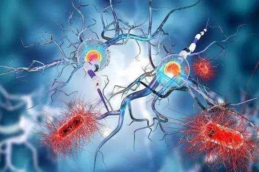 枣庄抑癌能力基因检测