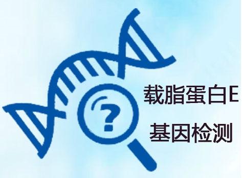 青岛载脂蛋白E基因检测