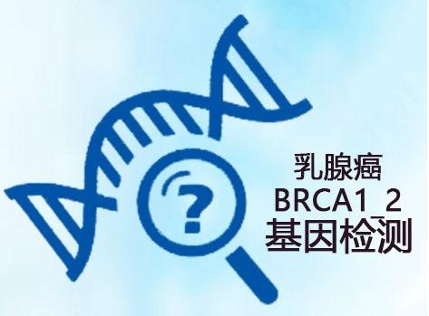 乳腺癌BRCA1_2基因检测