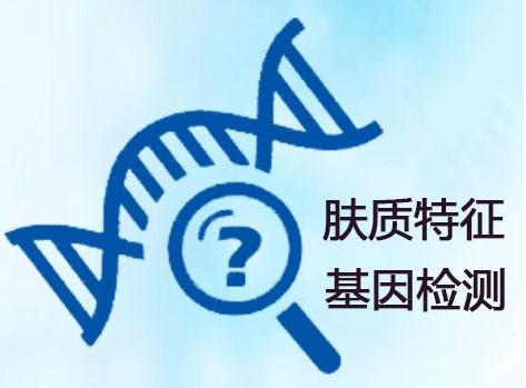 肤质特征基因检测